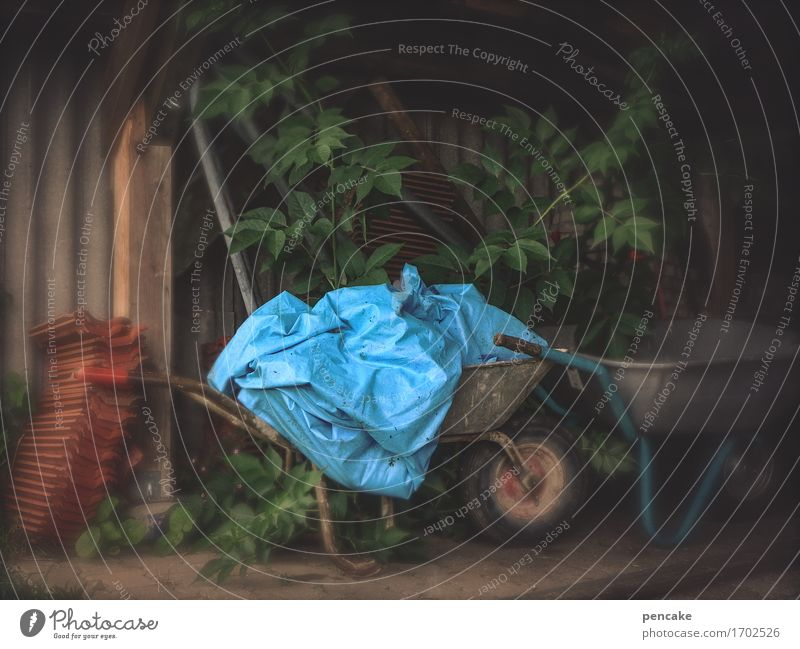 blauer engel Umwelt Natur Feld Paket Kunststoffverpackung Zeichen authentisch dreckig Handel Kultur Rätsel Umweltverschmutzung Umweltschutz Häusliches Leben