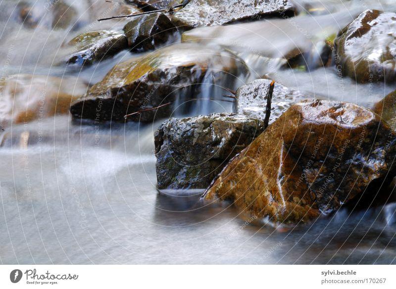 überfließende wasser Umwelt Natur Landschaft Urelemente Wasser Küste Flussufer Wasserfall Bewegung nass natürlich Stimmung Idylle Kraft Leben rein Rauschen Bach