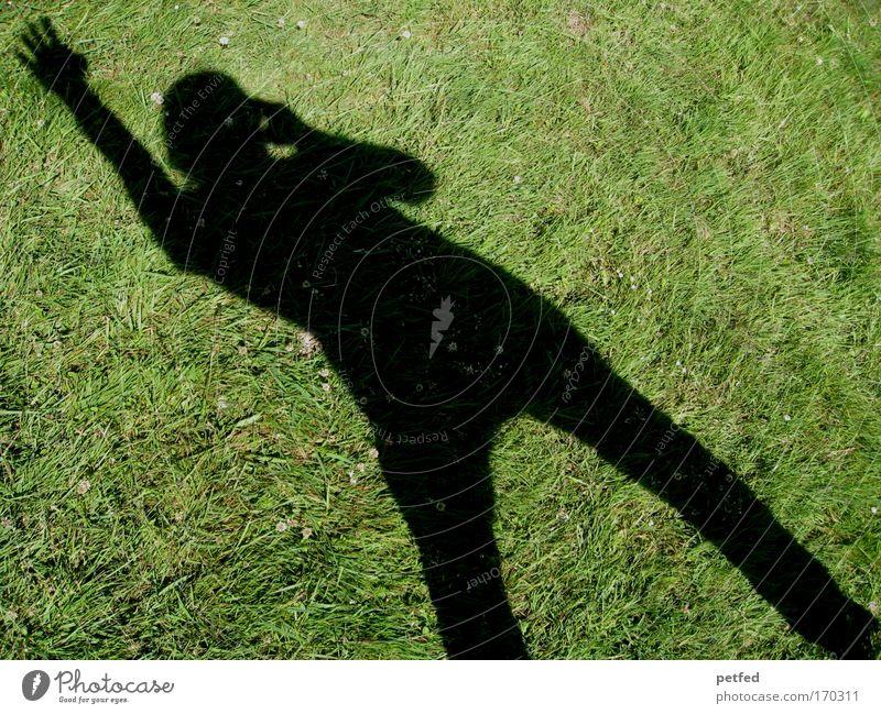 ... Hallo... Taxi ... !!! Frau Erwachsene 1 Mensch Erde Gras Telefongespräch Stress winken mehrfarbig Außenaufnahme Schatten Totale Ganzkörperaufnahme