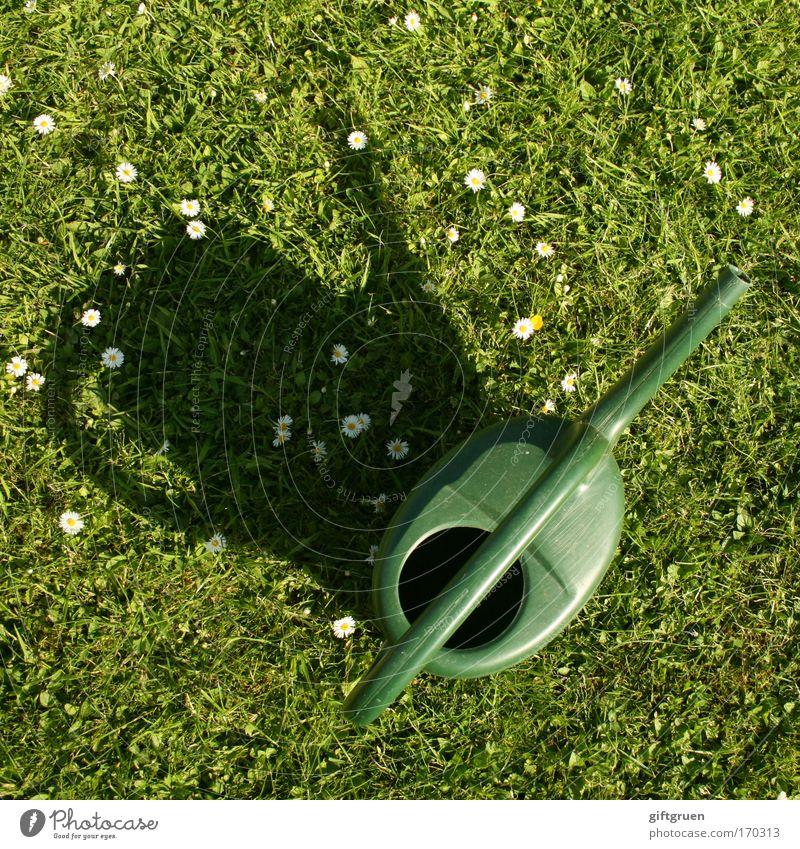 regenmacher Farbfoto Außenaufnahme Menschenleer Schatten Vogelperspektive Blume Kunststoff grün Gießkanne Gießkannenprinzip Rasenmäherprinzip Regenmacher Wasser