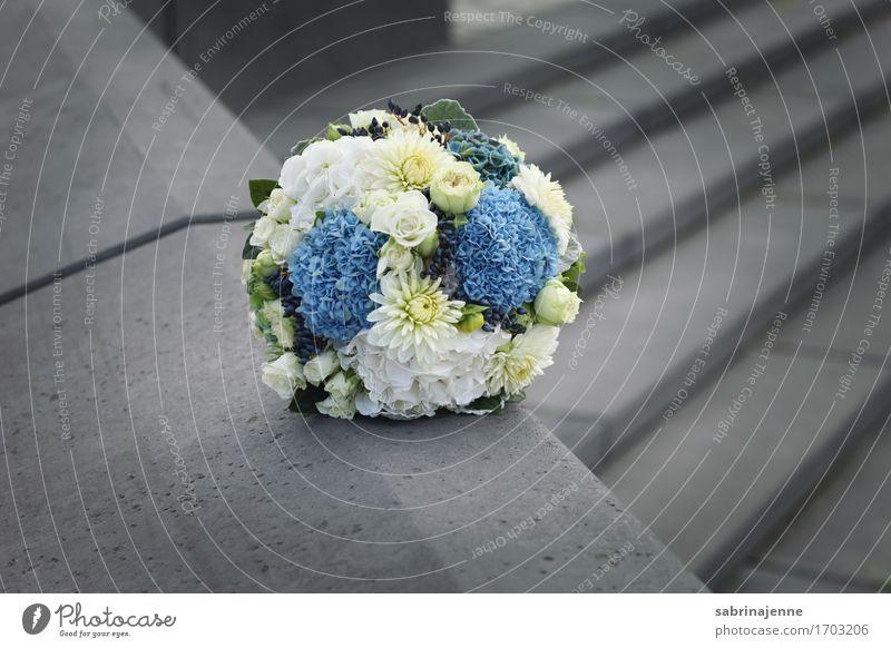 Brautstrauß Blumenstrauß Glück Ehe Hochzeit blau weiß grau Freisteller Liebe Bündel Hochzeitstag (Jahrestag) Farbfoto Außenaufnahme Textfreiraum rechts