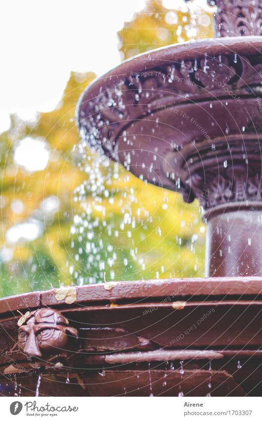Tropfenfänger Kunst Skulptur Wassertropfen Herbst Schönes Wetter Park Brunnen Springbrunnen ästhetisch frisch kalt nass braun gold grün violett Ewigkeit Frieden