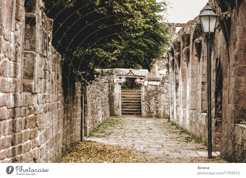 schwerer Gang Ruine Bauwerk Kloster Arkaden Mittelalter Mauer Wand Tür Tor Treppe Sehenswürdigkeit dunkel gruselig historisch kaputt lang braun Zukunftsangst