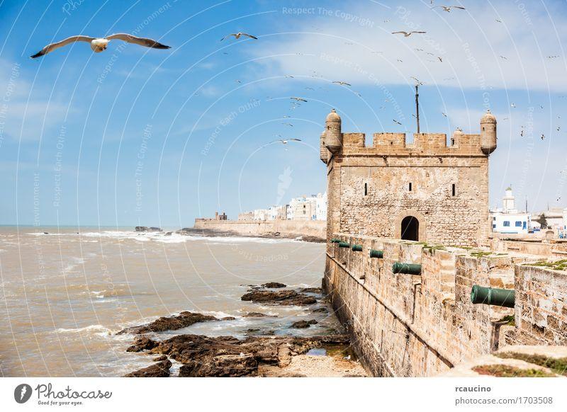 Essaouira: das portugiesische Schloss - Marokko, Afrika Ferien & Urlaub & Reisen Sommer Meer Wellen Landschaft Himmel Küste Kleinstadt Stadt Burg oder Schloss