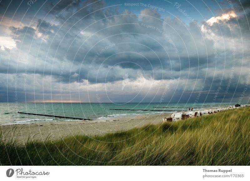 Ostseestrand Natur Wasser Himmel Meer grün blau Pflanze Sommer Strand Ferien & Urlaub & Reisen Gras Frühling Sand Landschaft Wellen Küste