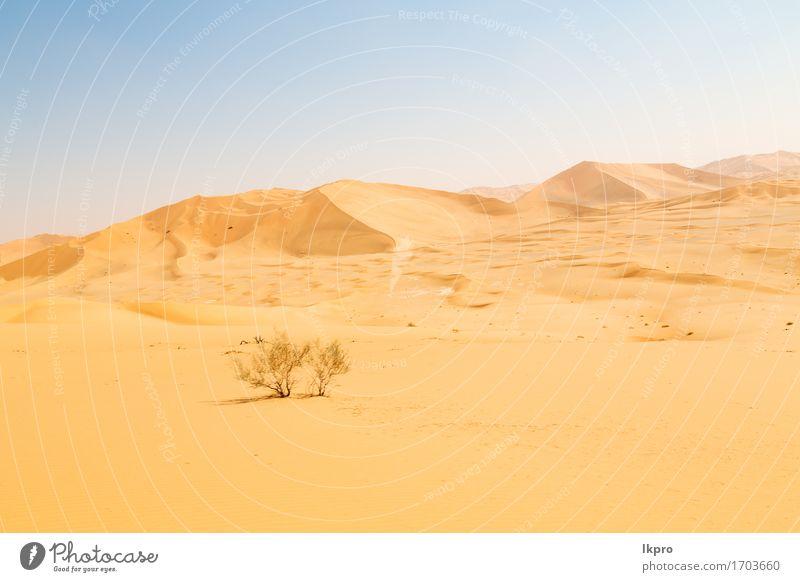 d Düne in Oman alte Wüste Rub al khali schön Ferien & Urlaub & Reisen Tourismus Abenteuer Safari Sommer Sonne Natur Landschaft Sand Himmel Horizont Park Hügel
