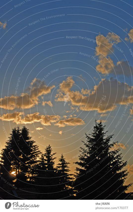 Das Ende Der Sonne Farbfoto Außenaufnahme Menschenleer Textfreiraum oben Abend Dämmerung Sonnenaufgang Sonnenuntergang Umwelt Natur Landschaft Luft Himmel