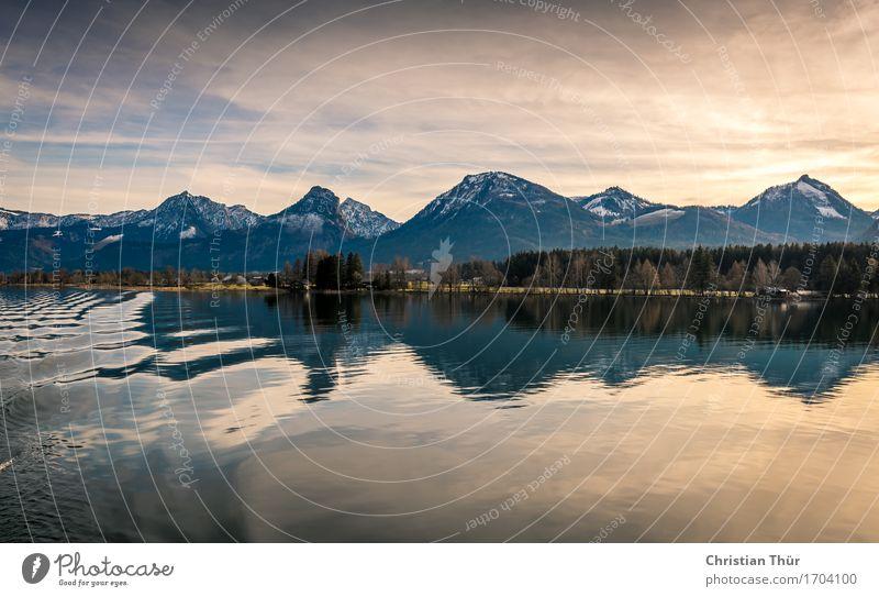 Seeromantik Himmel Natur Ferien & Urlaub & Reisen Pflanze Wasser Baum Landschaft Winter Wald Berge u. Gebirge Umwelt Leben Gefühle Schnee Tourismus