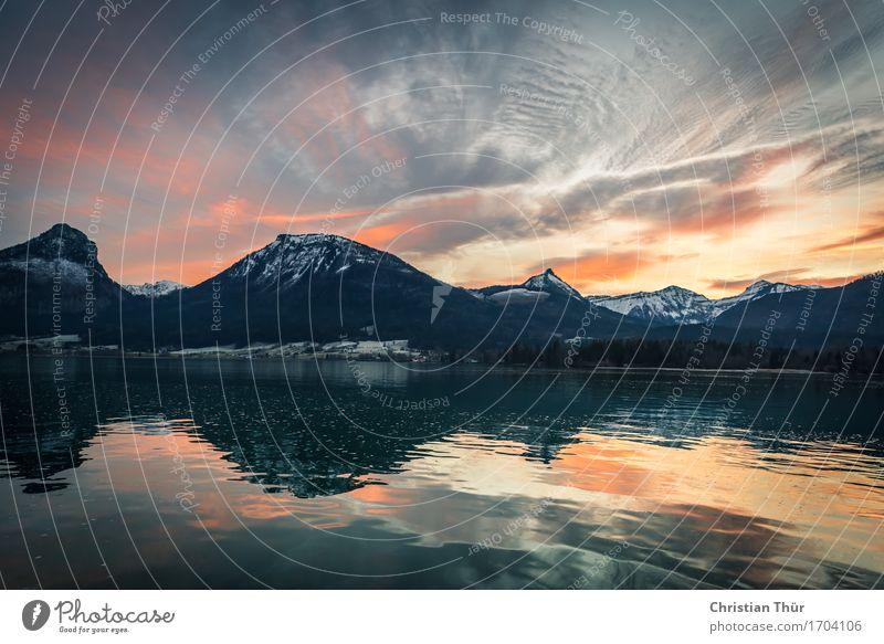 Morgenröte am See Natur Ferien & Urlaub & Reisen Pflanze schön Wasser Landschaft Erholung Wolken ruhig Tier Ferne Winter Berge u. Gebirge Umwelt Küste Schnee