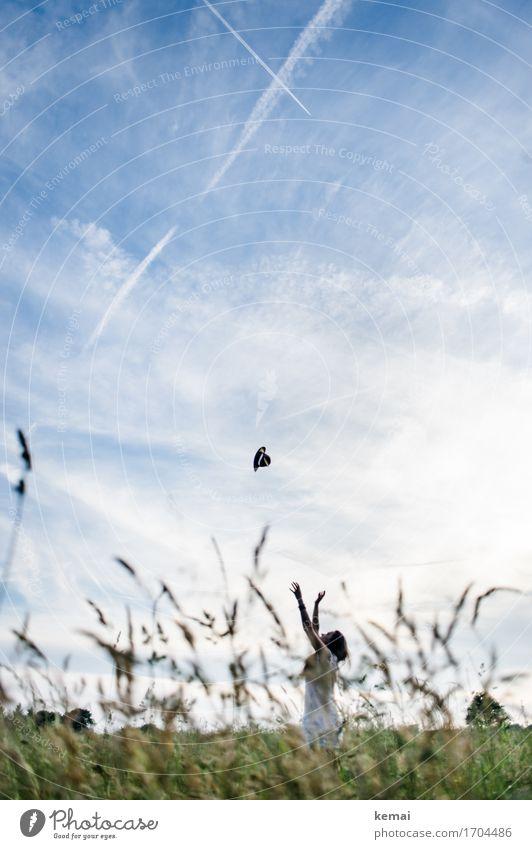 Fang den Hut Mensch Himmel Natur Jugendliche Sommer Junge Frau schön Freude 18-30 Jahre Erwachsene Leben Wiese Gras feminin Stil Spielen