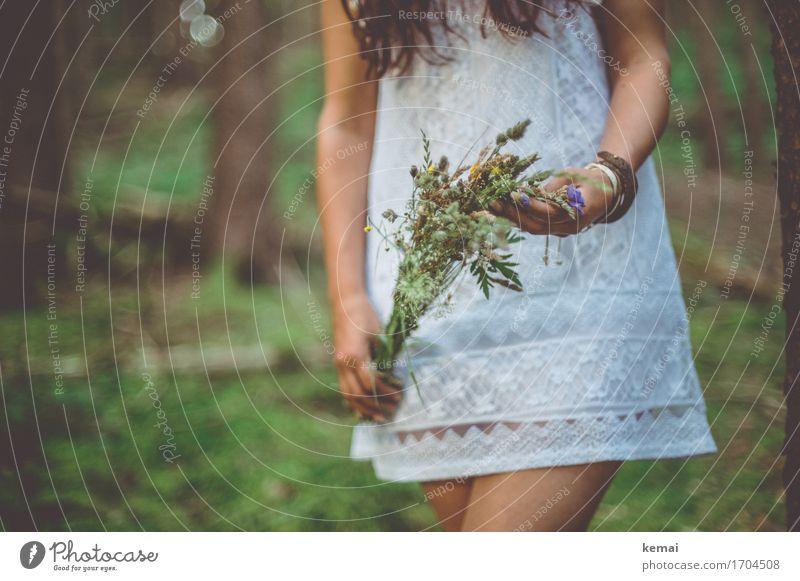 Wildblumen Mensch Natur Jugendliche Junge Frau schön Hand Blume ruhig Wald 18-30 Jahre Erwachsene Leben Lifestyle Liebe feminin Stil