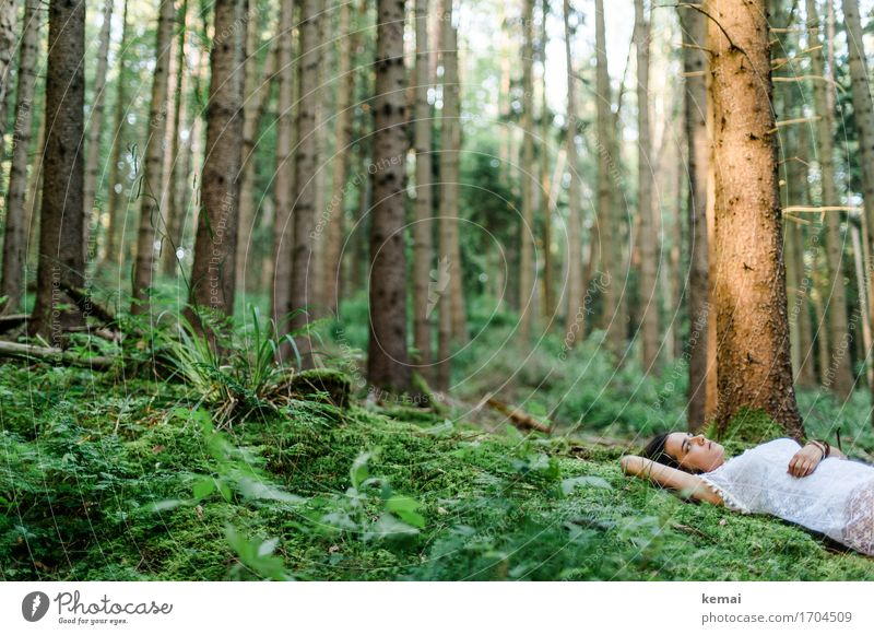 Dreamed a dream I will not tell Mensch Natur Jugendliche Pflanze Sommer grün Junge Frau Baum Erholung ruhig Wald 18-30 Jahre Erwachsene Leben Traurigkeit