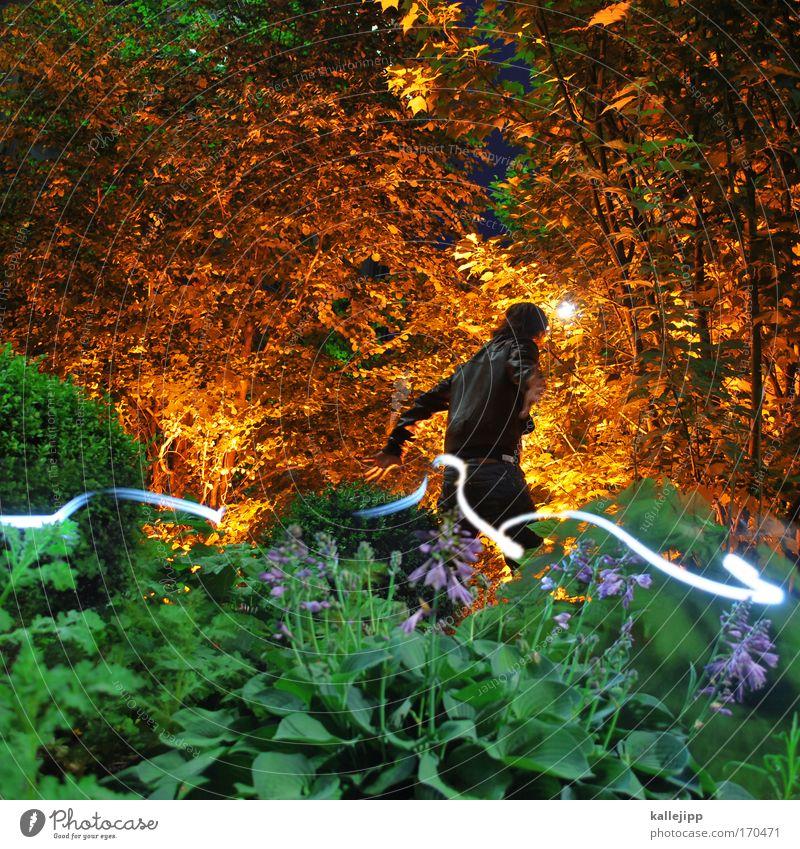 im märchenwald Farbfoto mehrfarbig Außenaufnahme Experiment Nacht Lichterscheinung Zentralperspektive Blick nach hinten Mensch maskulin Mann Erwachsene 1 Umwelt