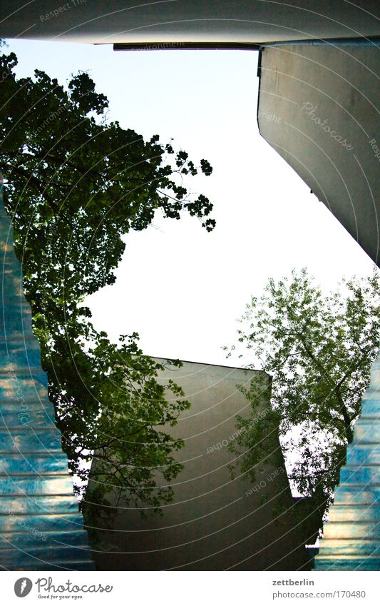 Überdachter Fahrradstand Himmel Baum grün Pflanze Sommer Blatt Haus Mauer Gebäude Dach Rad Hinterhof Gesetze und Verordnungen Mieter Stadthaus Sauerstoff