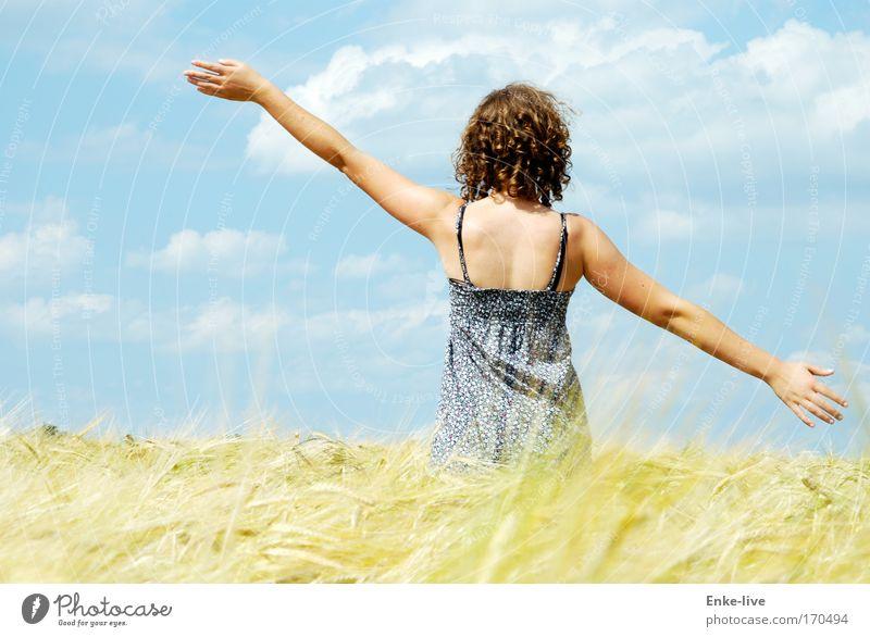 fly like an eagle Natur Jugendliche blau schön Sonne Sommer Erholung feminin Freiheit Glück Gesundheit Frau Tanzen Feld gold Sicherheit