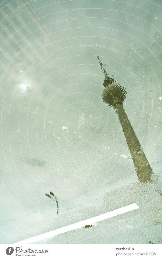 Regen hochkant Wasser Straße Berlin Straßenverkehr Wassertropfen Tropfen Gewitter Pfütze Berliner Fernsehturm Gully Hauptstadt Alexanderplatz Flut Fahrbahn