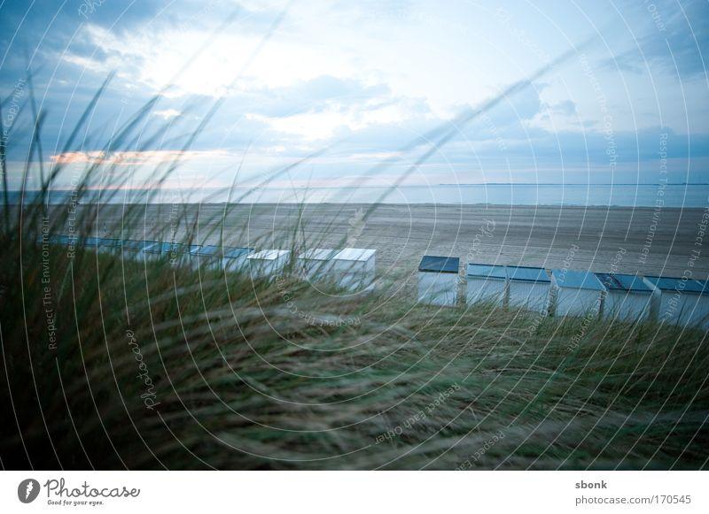 Strandland Farbfoto Gedeckte Farben Außenaufnahme Menschenleer Textfreiraum oben Abend Dämmerung Lichterscheinung Weitwinkel Ferien & Urlaub & Reisen Ausflug