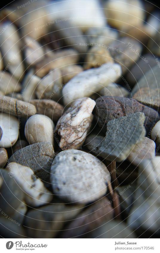 Stone Cold Natur Landschaft Umwelt Stein Urelemente Makroaufnahme selektiv