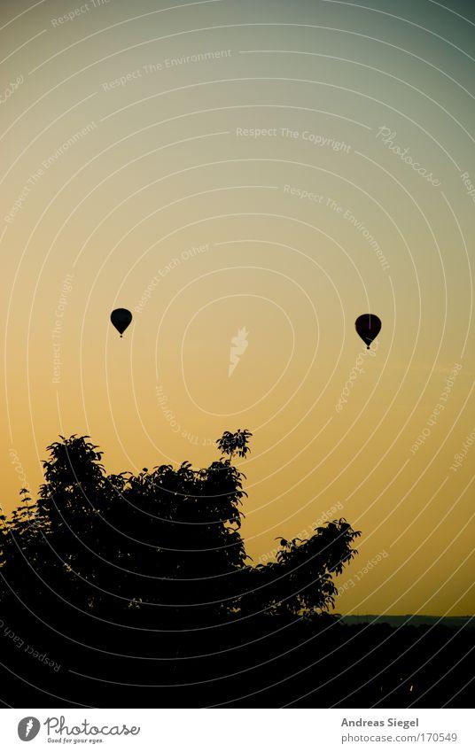 Südhöhe(n-Flug) Farbfoto Außenaufnahme Menschenleer Textfreiraum oben Abend Dämmerung Kontrast Silhouette Sonnenaufgang Sonnenuntergang Lifestyle