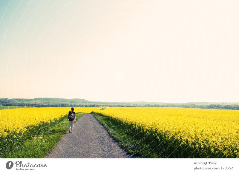 Und er teilte das gelbe Meer... Mensch Frau Himmel Natur Einsamkeit Erwachsene Erholung Straße Wege & Pfade Erde Frühling träumen Zufriedenheit Feld gehen