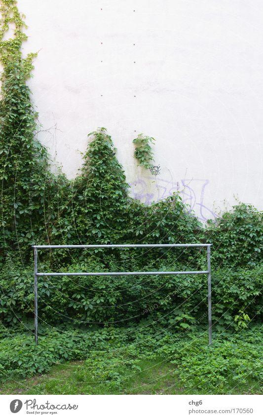 Wo sind die Kinder..... weiß grün Pflanze Wand grau Stein Mauer Gebäude Metall Wohnung Fassade Häusliches Leben Reinigen Sauberkeit silber Spielplatz