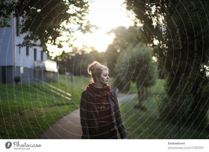 Eins Mensch feminin Junge Frau Jugendliche Erwachsene Freundschaft 1 18-30 Jahre Sonne Sonnenaufgang Sonnenuntergang Schönes Wetter Baum Menschenleer