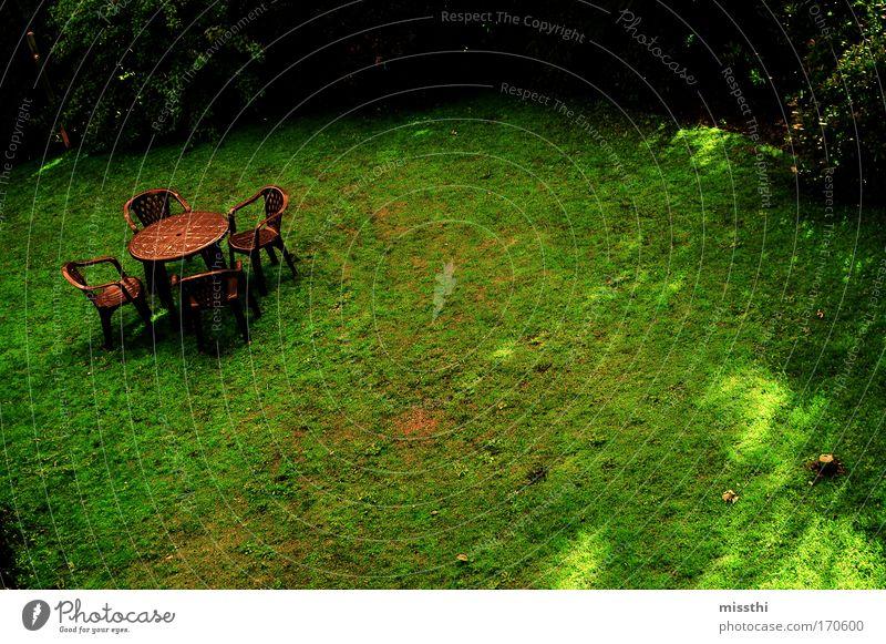 Grün. Braun. Farbfoto Außenaufnahme Menschenleer Tag Sonnenstrahlen Vogelperspektive Weitwinkel Stuhl Gartenstuhl Natur Sommer Gras Wiese Einsamkeit ruhig trist