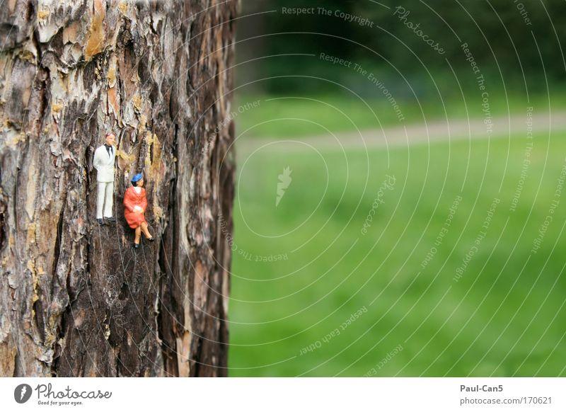 Weitblick Mensch Frau Natur Mann grün Baum Erwachsene Erholung Landschaft Ferne Umwelt Wiese Denken Paar Stimmung braun