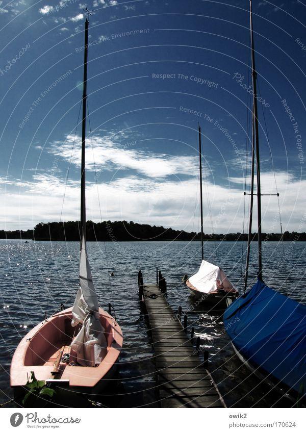 Segel gestrichen Himmel Natur Pflanze Wasser Landschaft Wolken Ferne Strand Umwelt See Deutschland Horizont Freizeit & Hobby Luft Wellen Idylle