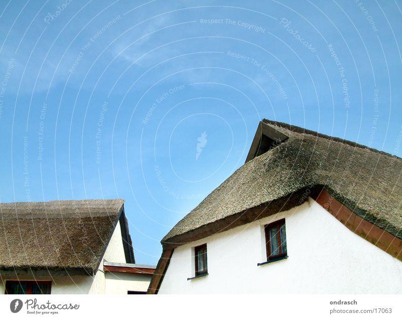 Reetdach Dach Meer Haus Dorf Strand Ferien & Urlaub & Reisen Architektur Riedgras Schilfrohr Ostsee Häusliches Leben