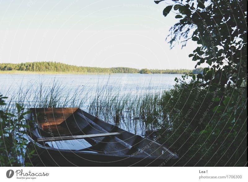 Eine Bootsfahrt die ist lustig... Himmel Natur Ferien & Urlaub & Reisen Pflanze Sommer Wasser Baum Landschaft Wald Umwelt Gras See Horizont ästhetisch Ausflug