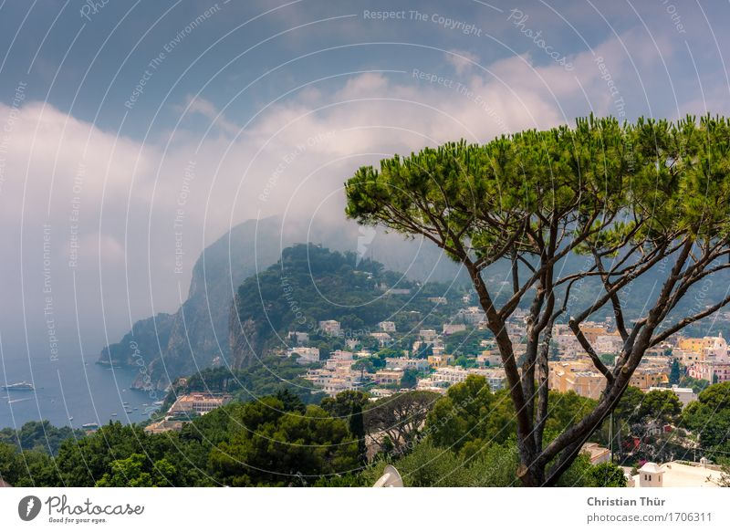 Capri Natur Ferien & Urlaub & Reisen Sommer Baum Meer Landschaft Erholung Ferne Berge u. Gebirge Umwelt Leben Tourismus Zufriedenheit wandern ästhetisch Ausflug