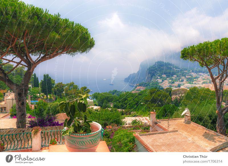 Capri im Sommer Ferien & Urlaub & Reisen Baum Meer Erholung ruhig Strand Berge u. Gebirge Gefühle Gras Garten Stimmung Tourismus Zufriedenheit wandern Sträucher
