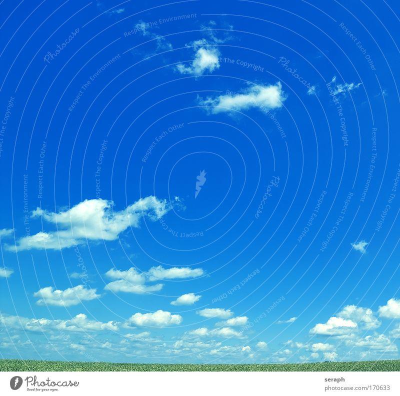 Freiheit Natur Himmel Erholung Gras Landschaft Hintergrundbild Umwelt Horizont Frieden Schönes Wetter Leichtigkeit ländlich friedlich breit minimalistisch