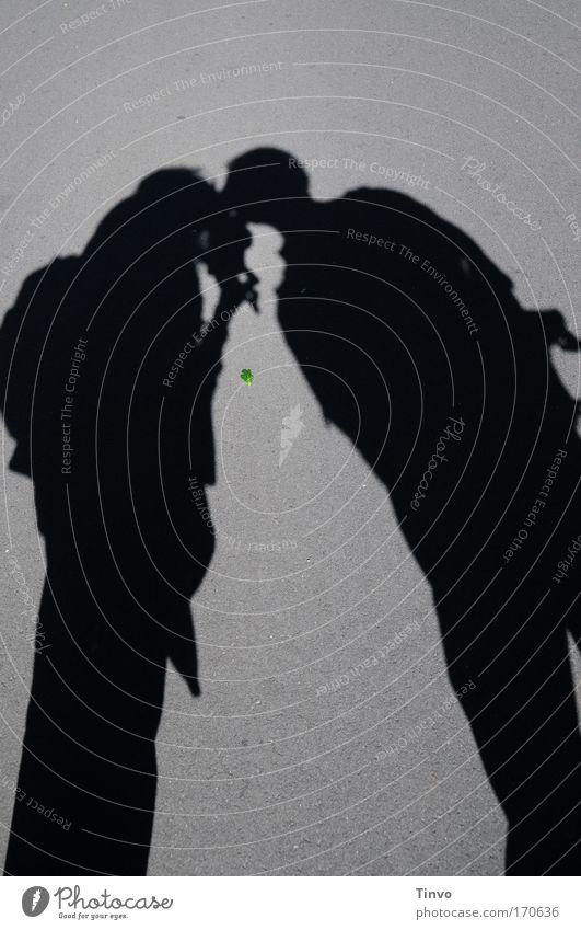 shadows, kisses and a green leaf Farbfoto Gedeckte Farben Außenaufnahme Tag Abend Licht Schatten Kontrast Silhouette Mensch Frau Erwachsene Mann Paar 2 Küssen