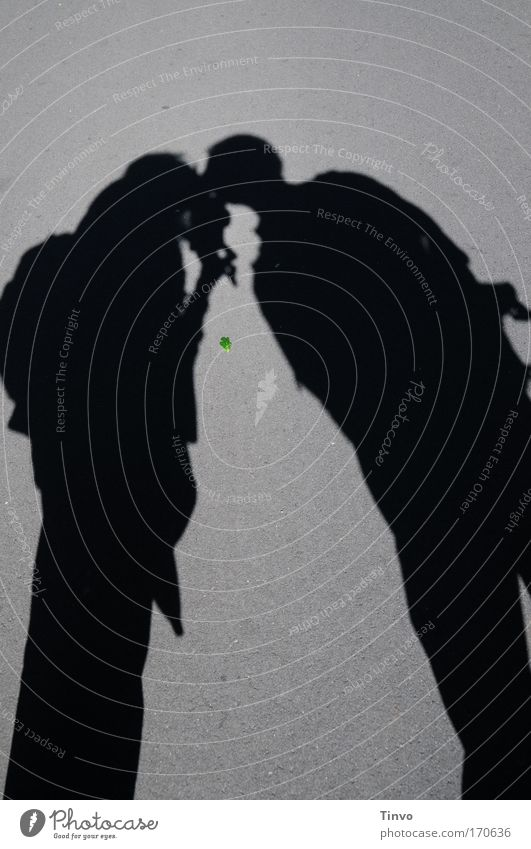shadows, kisses and a green leaf Frau Mensch Mann Erwachsene Liebe Freiheit Glück Paar Zusammensein paarweise stehen Romantik Idylle Sehnsucht Vertrauen Küssen