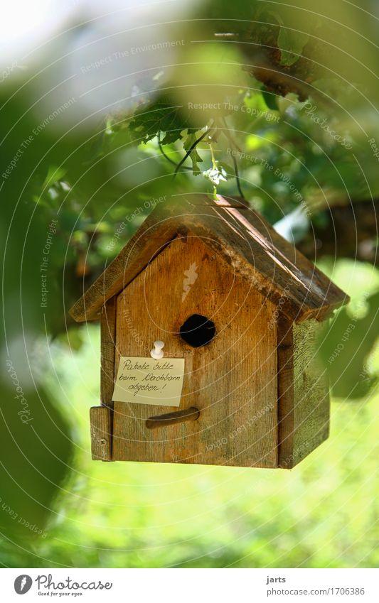 pakete bitte beim nachbarn abgeben II Baum Blatt Haus Wald Häusliches Leben Information Hütte hängen Post Paket Futterhäuschen