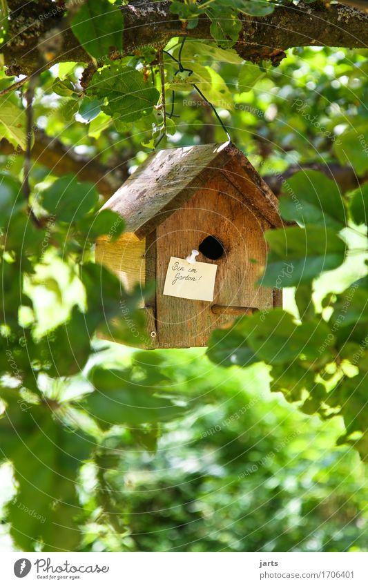 bin im garten ! Natur Baum Erholung Blatt Haus Holz Garten Park Häusliches Leben Freizeit & Hobby Pause Information Hütte Zettel Futterhäuschen