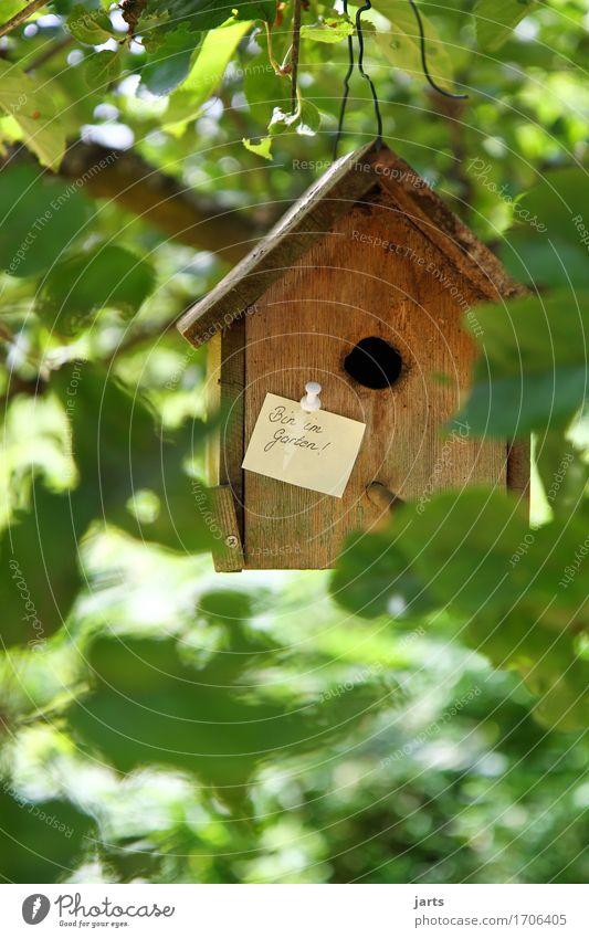 bin im garten Haus Holz Garten Häusliches Leben Information Hütte Zettel beweglich Holzhaus Futterhäuschen Traumhaus