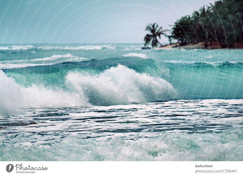 WWW...WahnsinnsWillmaWelle Ferien & Urlaub & Reisen Tourismus Ausflug Abenteuer Ferne Freiheit Landschaft Wasser Himmel Sommer Wellen Küste Strand Meer