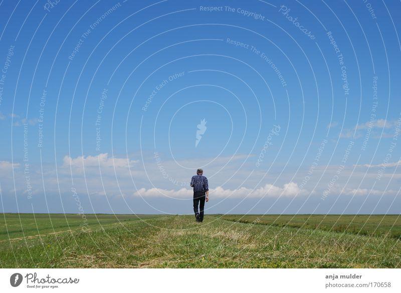 Einsamer Spaziergang Farbfoto Außenaufnahme Tag Zentralperspektive Rückansicht Mensch Mann Erwachsene Leben 1 Umwelt Natur Landschaft Erde Horizont Feld