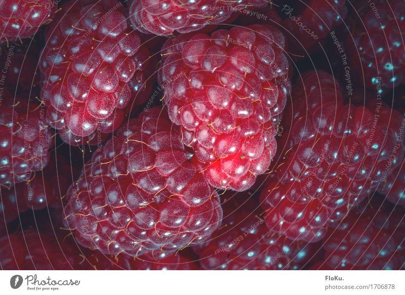 Himbeeren Lebensmittel Frucht Ernährung Bioprodukte Vegetarische Ernährung Diät frisch Gesundheit schön lecker natürlich saftig süß rot Beeren Vegane Ernährung