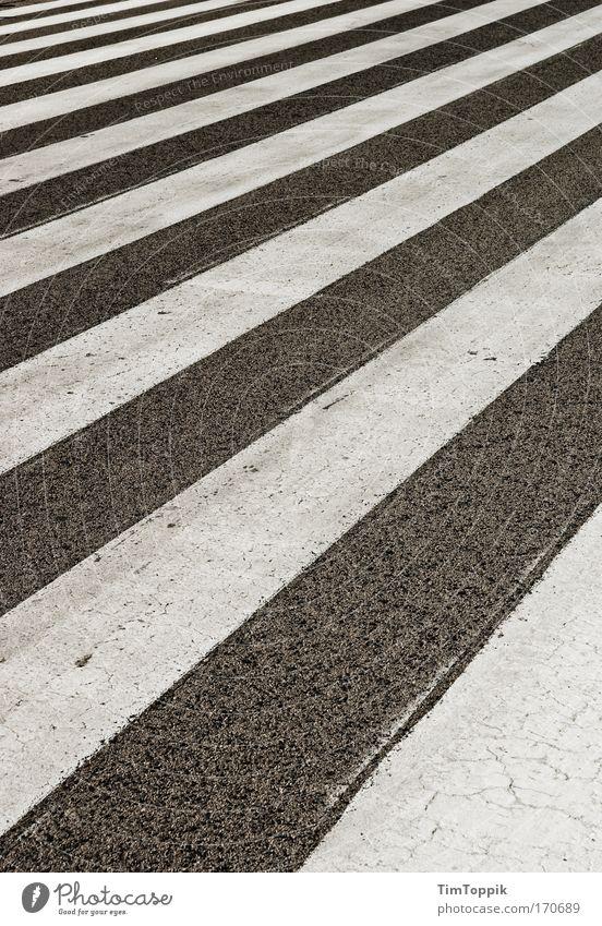 Streets and Stripes Außenaufnahme Menschenleer Verkehr Verkehrswege Personenverkehr grau schwarz weiß Muster Streifen Zebra Zebrastreifen Fußgängerübergang