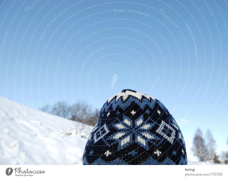 Schneeflöckchen blau Berge u. Gebirge Bewegung Mode wandern beobachten Schönes Wetter Mütze frieren Stolz Skifahrer Winterurlaub alpin Blick winterfest