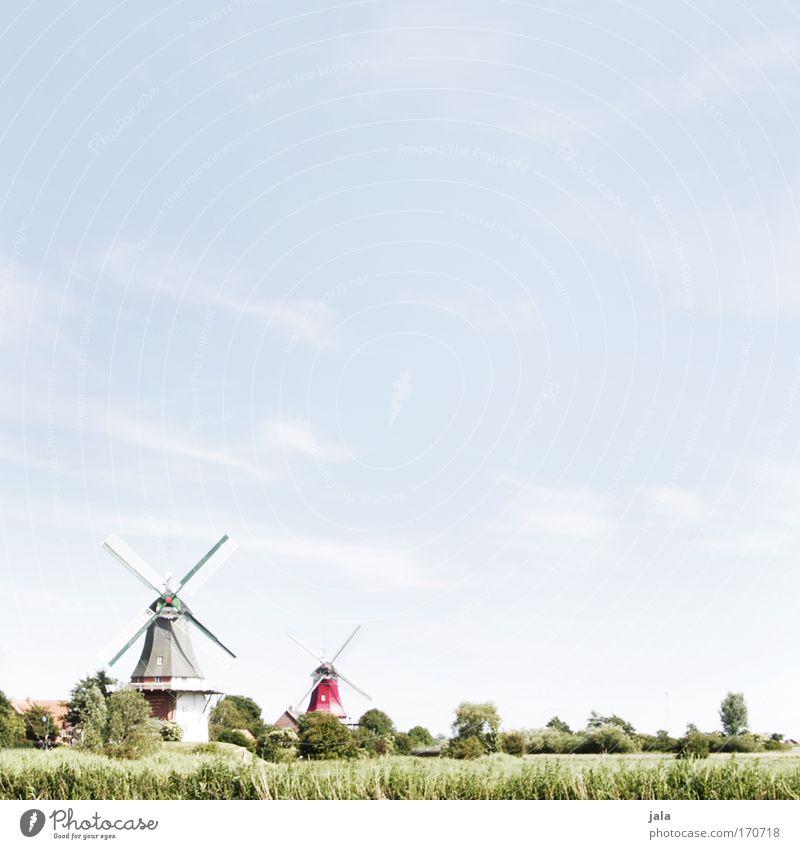 Idyllisches Wochenende Himmel Baum grün blau Pflanze Haus Wiese Gras Frühling Gebäude Landschaft hell Feld Mühle Dorf Meer