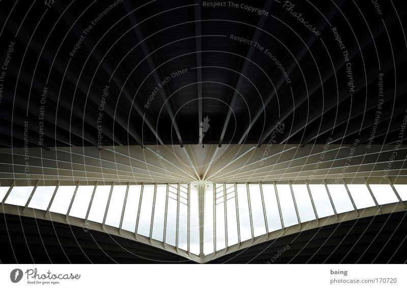 kling Dämmerung Hörsaal Bahnhof Flughafen Schwimmbad Gebäude Architektur Fassade Balkon Fenster Dach dunkel gigantisch hell Erkenntnis Halle Tag