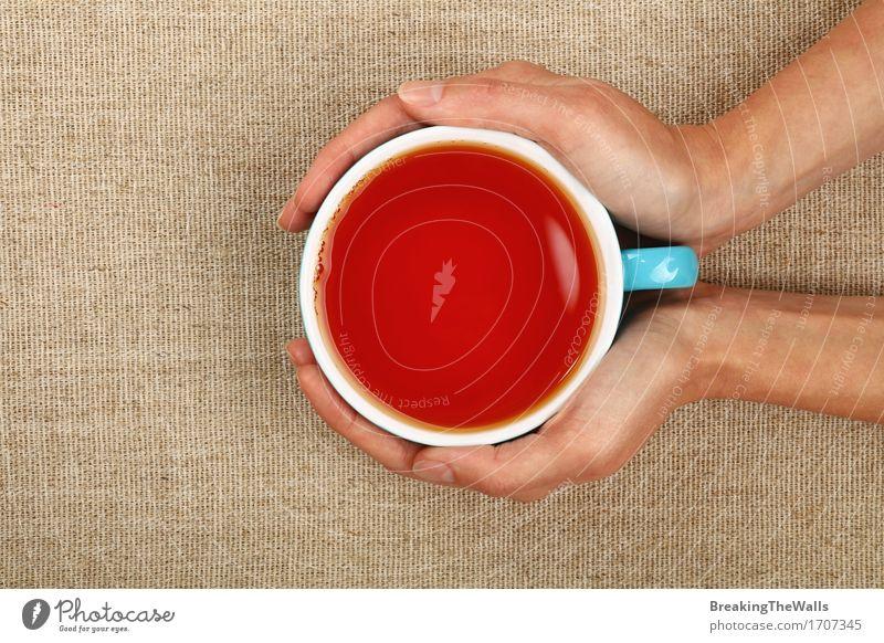 Zwei Frauenhände, die große Schale schwarzen Tee über Segeltuch halten Gesunde Ernährung Hand Erholung rot Freude Erwachsene feminin Aussicht Getränk heiß