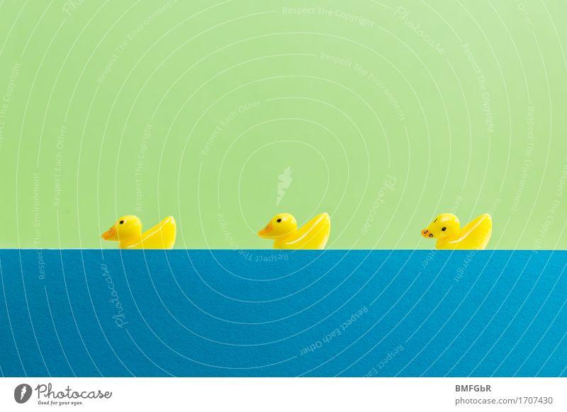 Tick, Trick und Track? Freude Wellness Schwimmbad Schwimmen & Baden Freizeit & Hobby Angeln Jagd Umzug (Wohnungswechsel) Jahrmarkt Wassersport Sportmannschaft