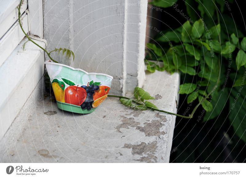 Eisbecher Frucht Speiseeis Müll genießen Süßwaren Schalen & Schüsseln Dessert Strandbar