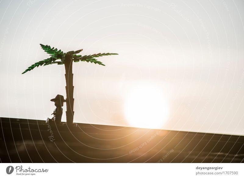 Zahlen der Palme und des Mannes auf Sonnenuntergang schön Ferien & Urlaub & Reisen Klettern Bergsteigen Erwachsene Natur Landschaft Pflanze Himmel Wolken Baum